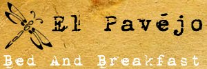 bed and breakfast el pavejo banner