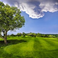 phoca_thumb_m_buca15_editfltsmall Photo Gallery - Golf Club Colli Berici - Golf Club Colli Berici